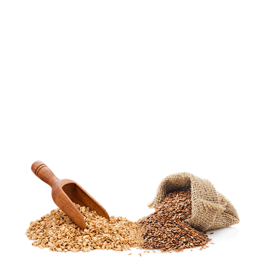 Multigrain Oats & Flax