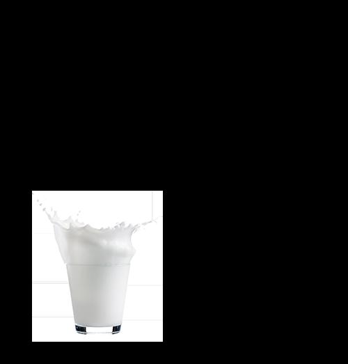 Milk Plus Bread