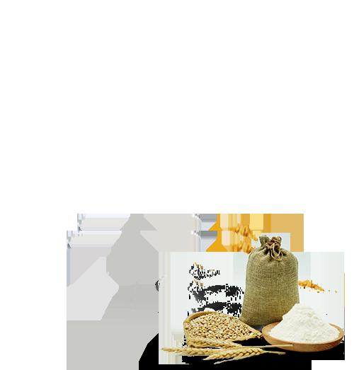 100-whole-wheat-malabar-parota-product-modernhover