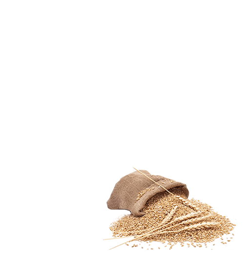 100% Whole Wheat Malabar Parota