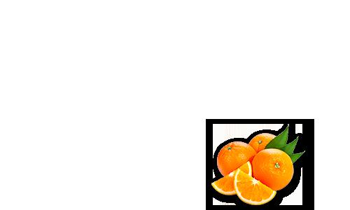 Orange Creme Bite
