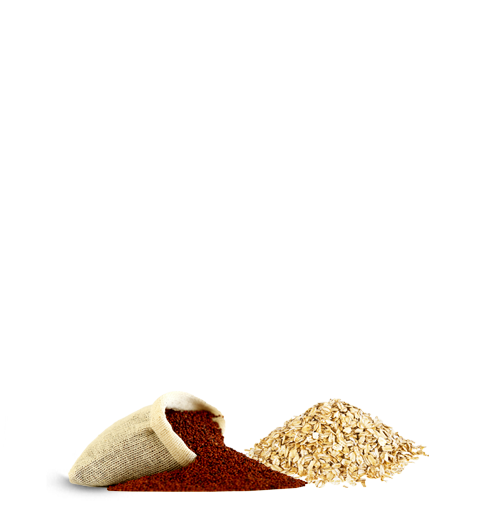 ragi-oats-product-hover-page
