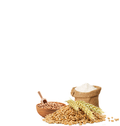 Modern Premium Bread (Chennai)
